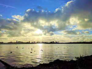 kralingse plas lake kralingen zeilen hardlopen wandelen picnic bbq rotterdam